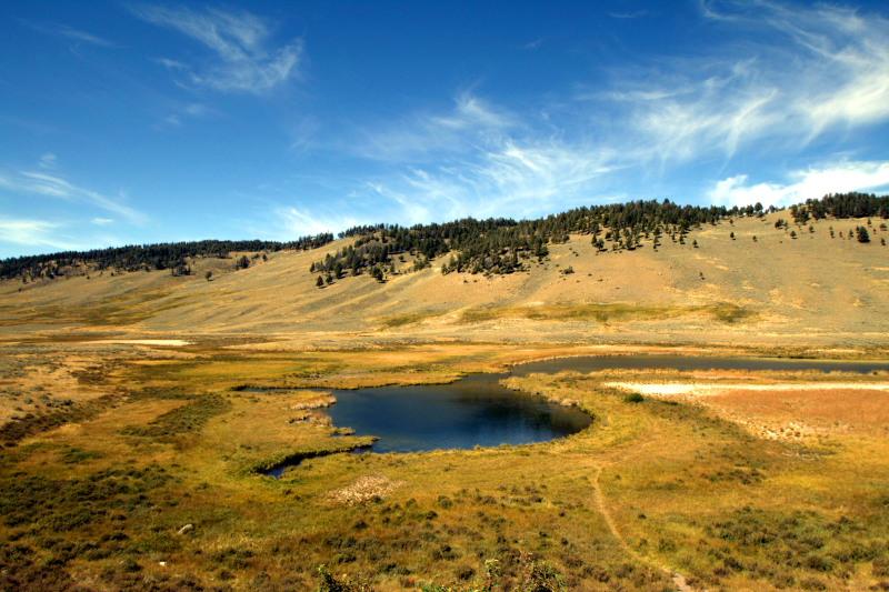 Blacktail Pond, Blacktail plateau - Yellowstone National Park