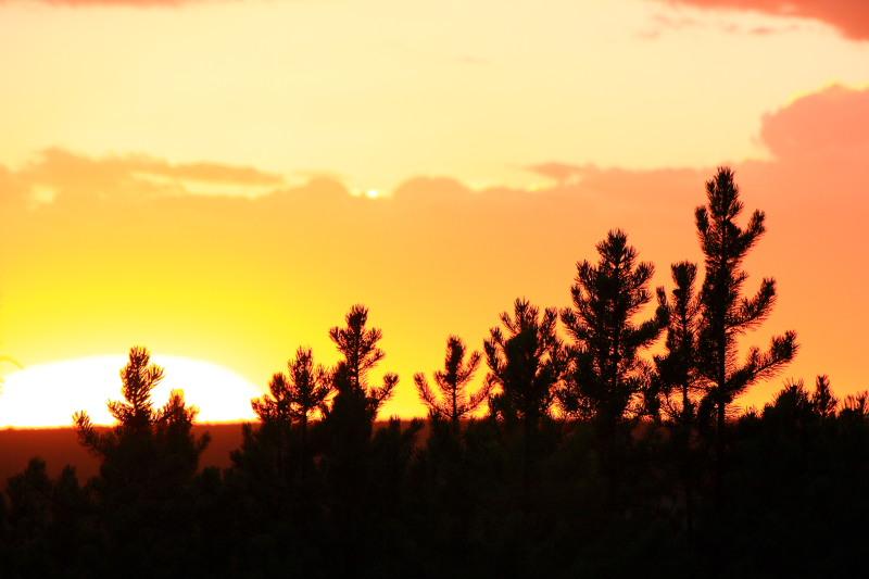 Sunset - Yellowstone National Park