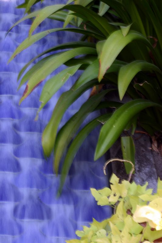Water, Ananda in the Himalyas, spa and resort
