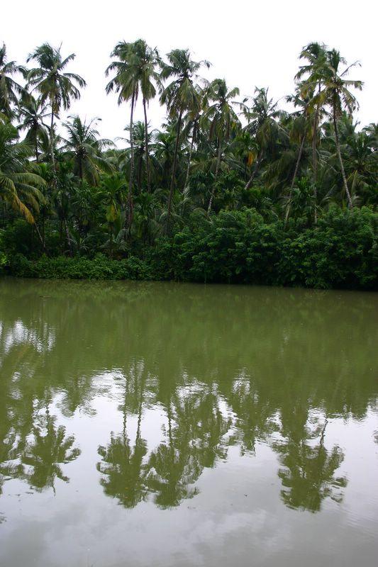Backwaters of Kerala, Melarkode
