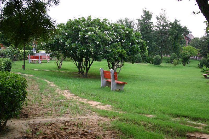 Rare park, Gurgaon