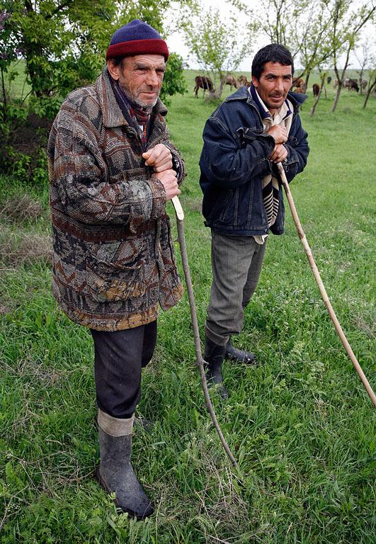 Shepherds from Azerbaijan