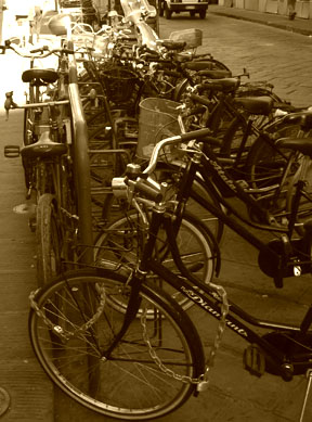 Bicycles everywhere!