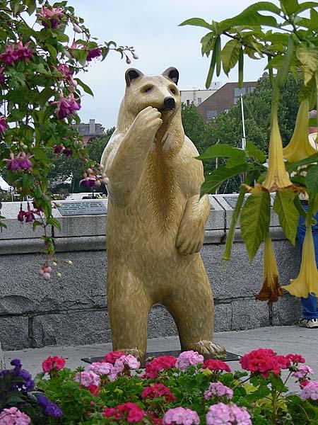 Golden Bear and Flowers