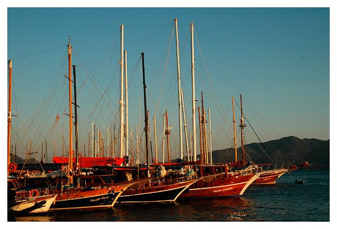 Sails boats at dusk