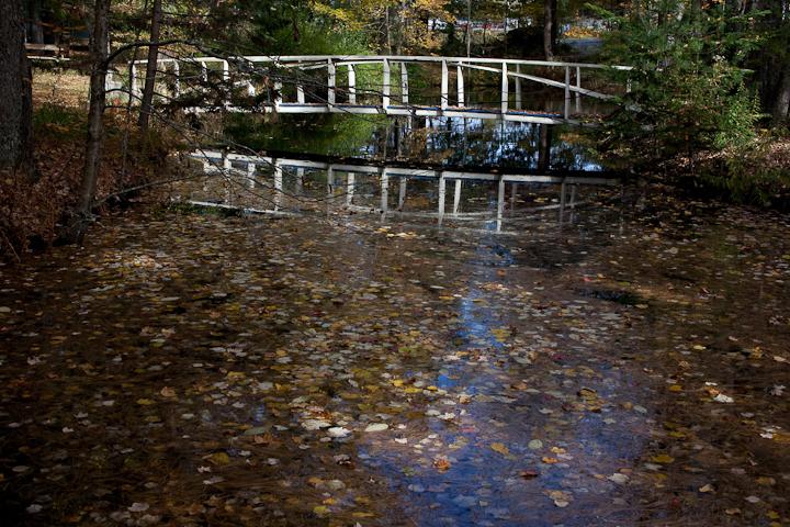 Birdsacre Pond Bridge #2