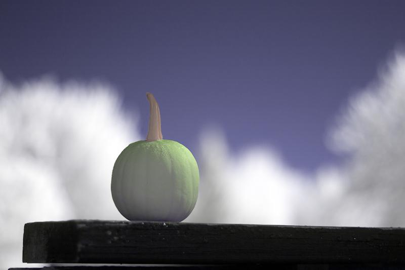 Little Green Pumpkin on Railing Really False Color