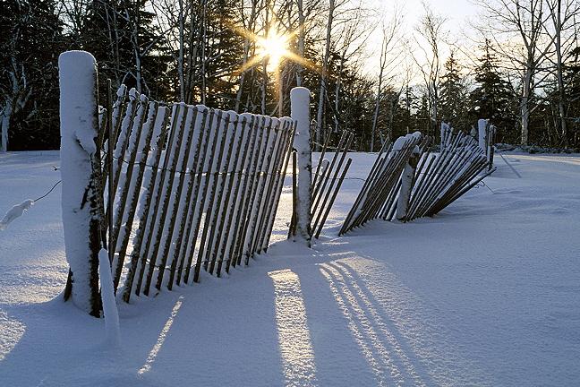 Fence at Sunrise