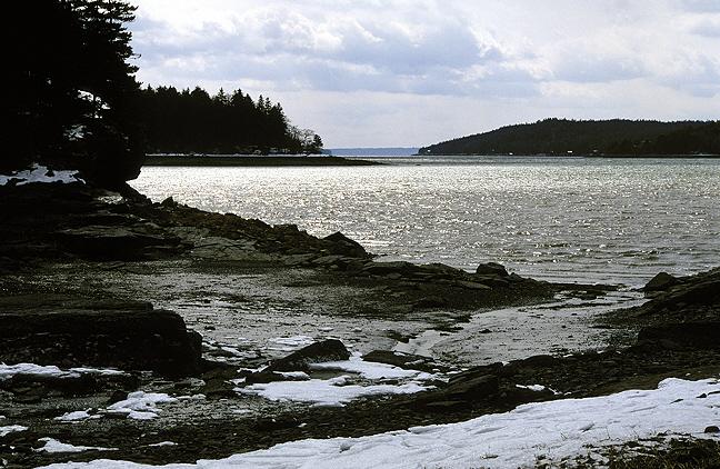 March Evening Low Tide, Morgan Bay