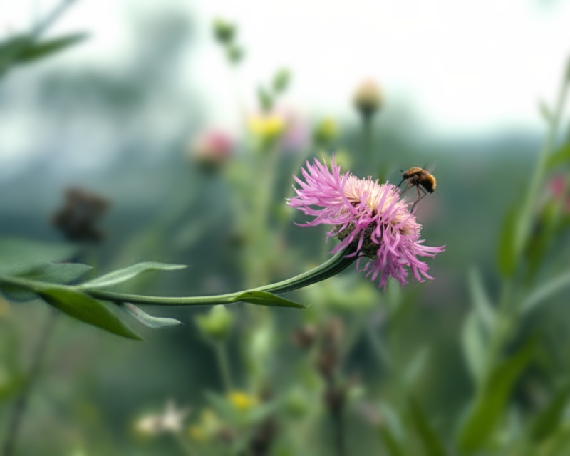 Bumblefly