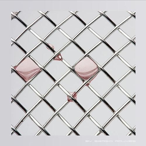 <b>1st Place</b><br>square drops<br>by sergio rojkes