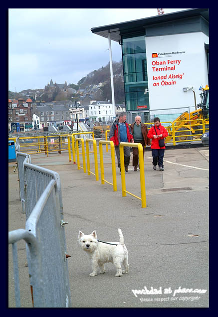 18042006 but Dad - I dont like boats!