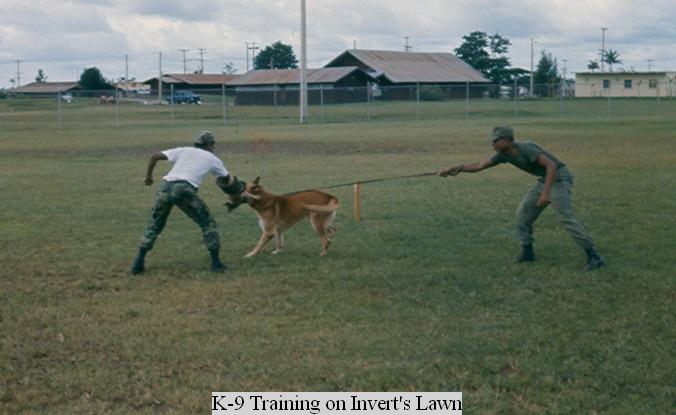 K-9 Training
