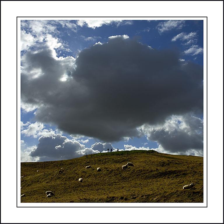 Sheep and cloud! Near Abbotsbury