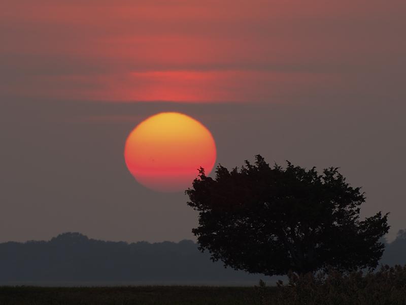 PI Sunset at PAC.jpg