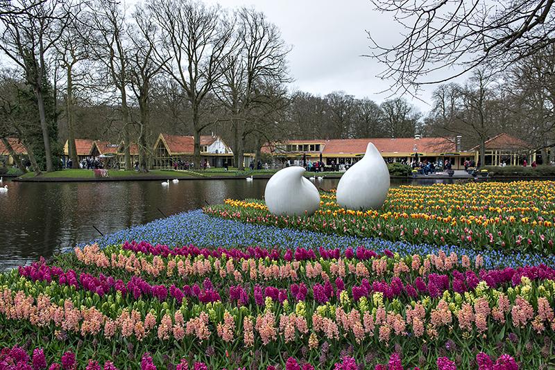 Keukenhof: floral display