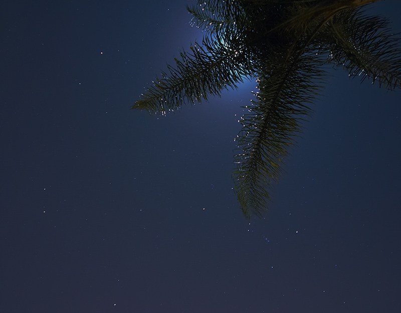 moon+orion7261.jpg