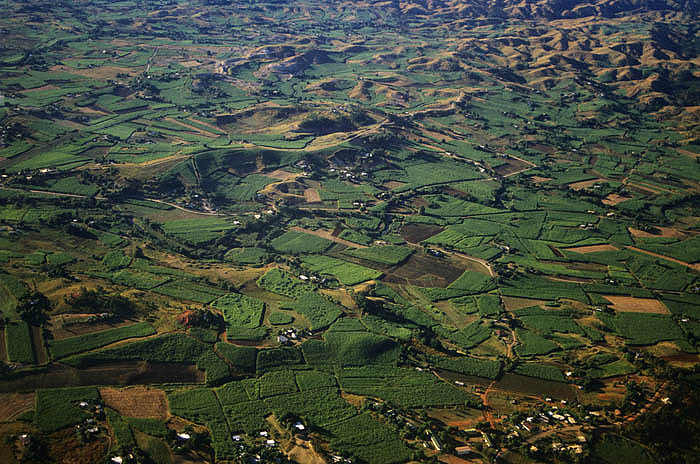 Aerial view of canefields