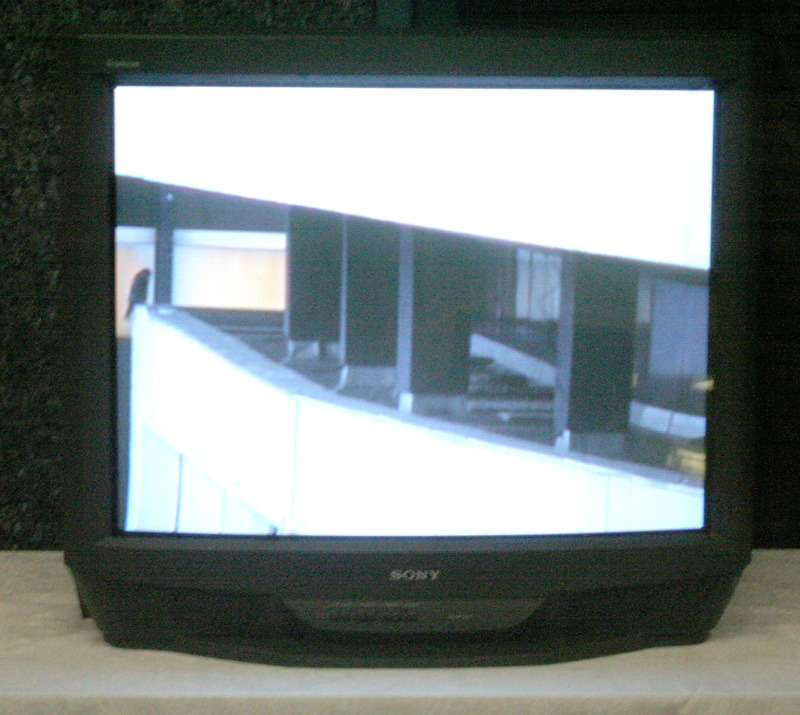 IMG_9011 on TV sm.jpg