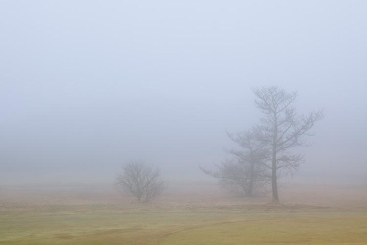 L130 Mist