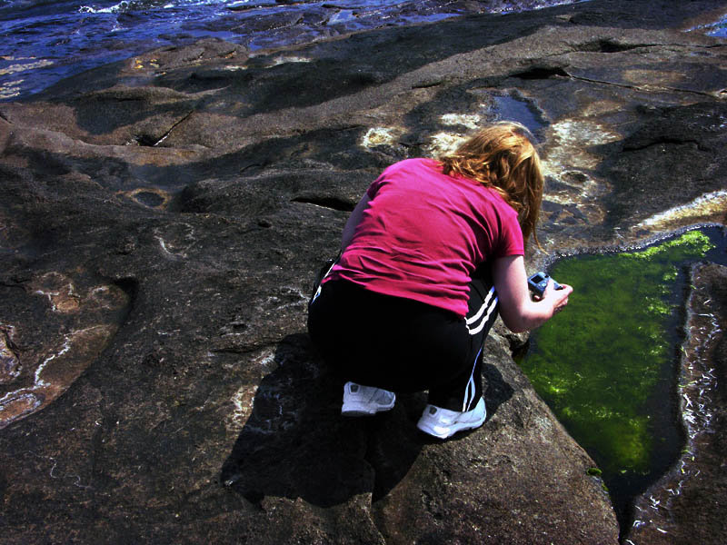 Shooting Tide Pool