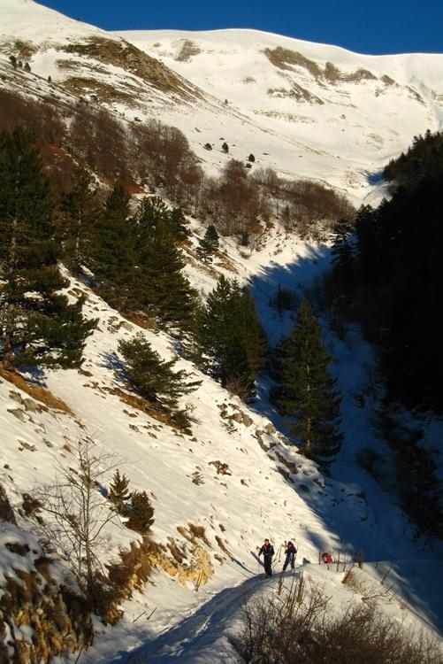 1er janvier 2008 : bas dans le ravin de Feuillette