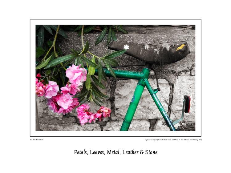 bycicle saddle