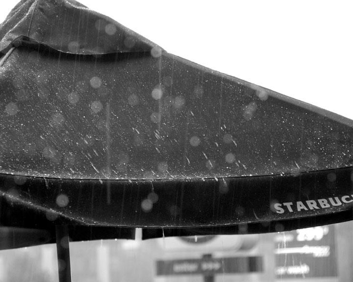 ds20060624a_0036a2w Umbrella in the Rain.jpg