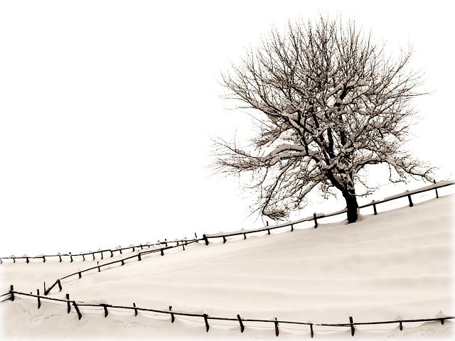 Wintertag / Winterday