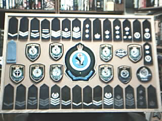 NSWP Patches and Ranks