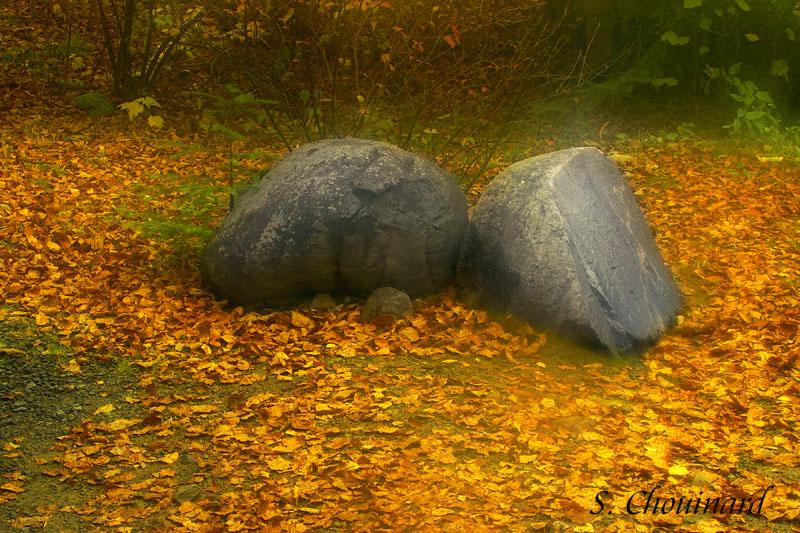 Les plus vieilles roches de la terre - Oldest rocks in the world.