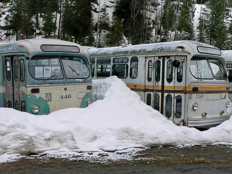 Brill busses.jpg