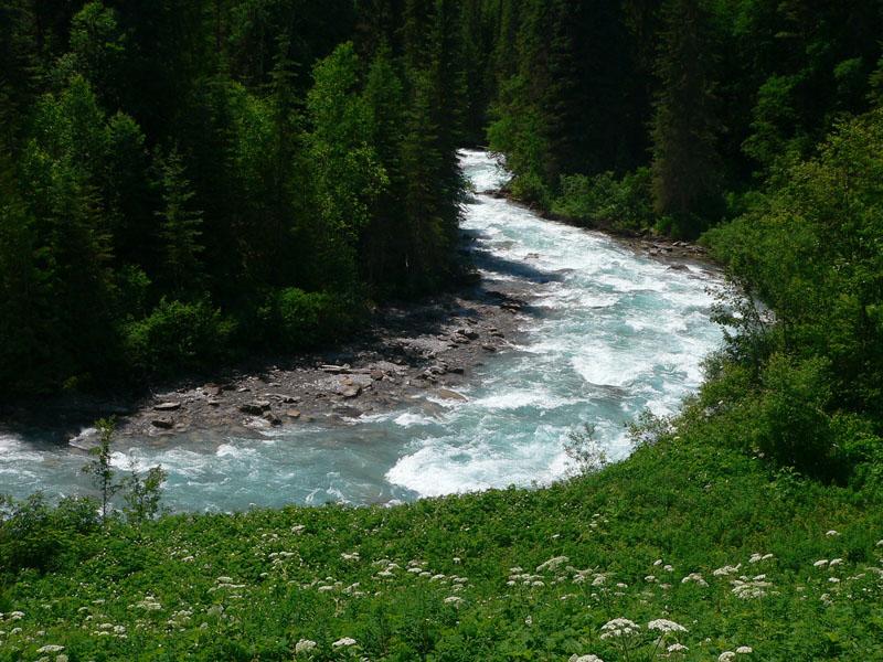 Robson River.jpg