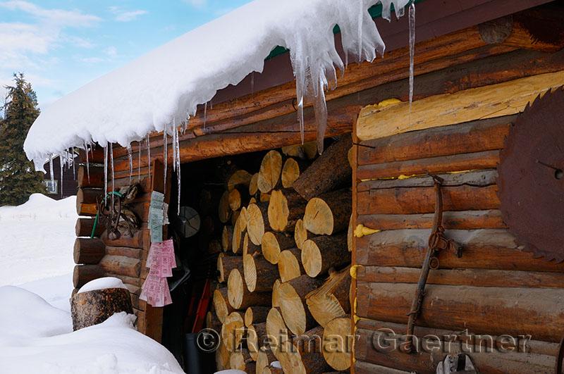 196 Bridger Teton firewood.jpg