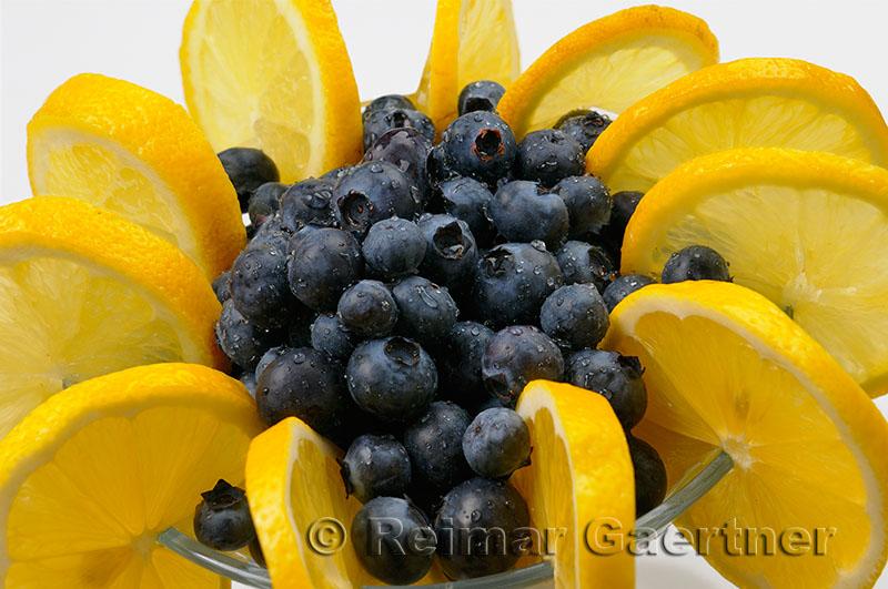 225 blueberry lemon 3.jpg