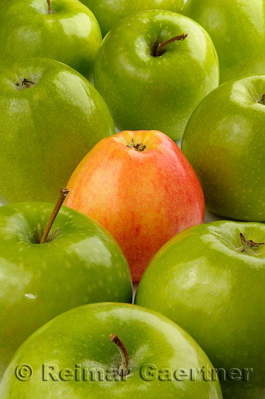 225 Odd apple.jpg