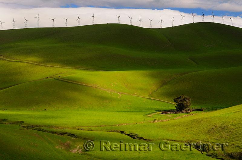 228 Altamont Pass Wind Farm 3.jpg