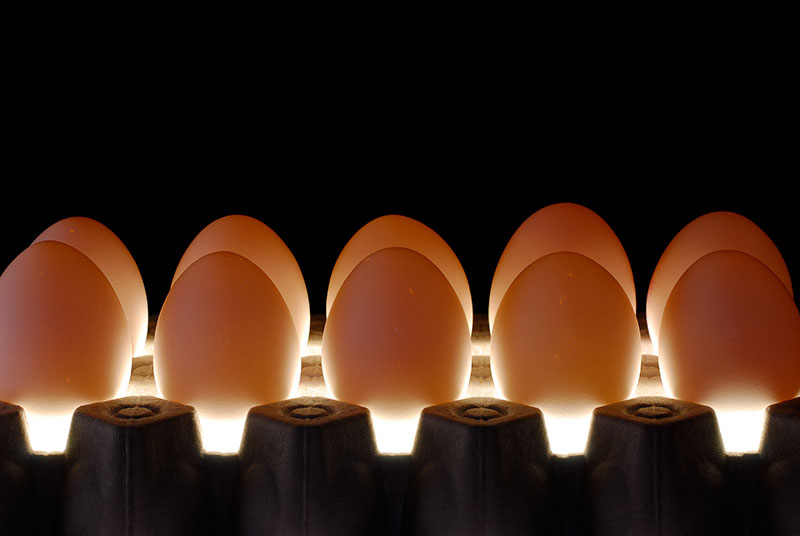 70 Backlit eggs 1.jpg