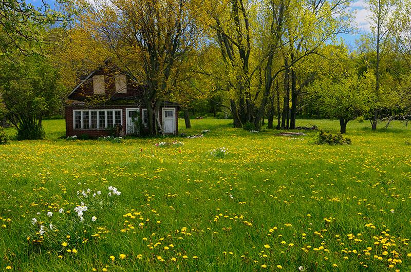 167 Abandoned Spring 1.jpg