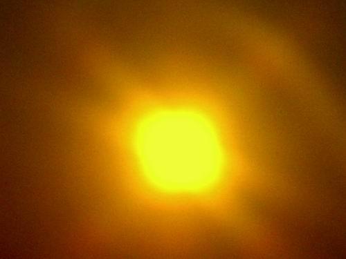 Sahara Sun?
