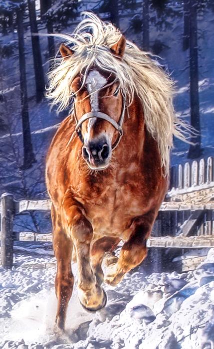 Running Horse - (PA# 115)
