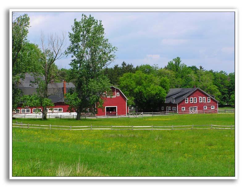 Spring-At-Knox-Farm-75