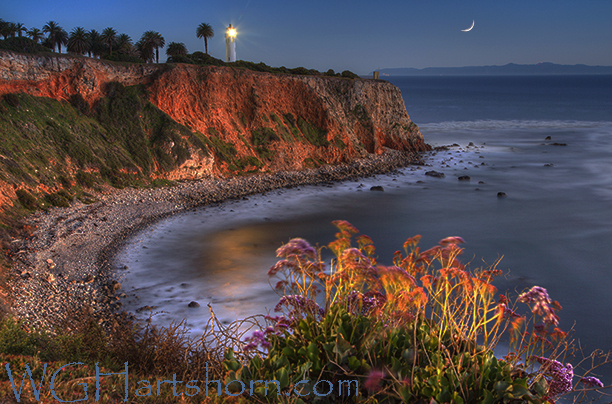 Point Vicentes Moonlight