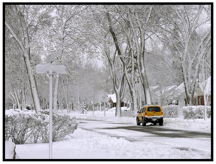 March 13 - It Snowed