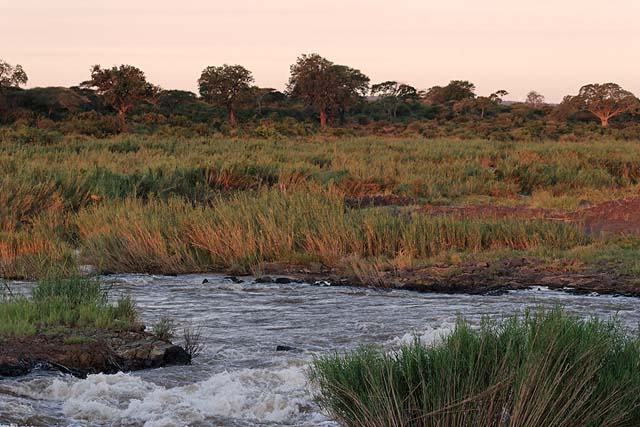 The Sabie River at dusk