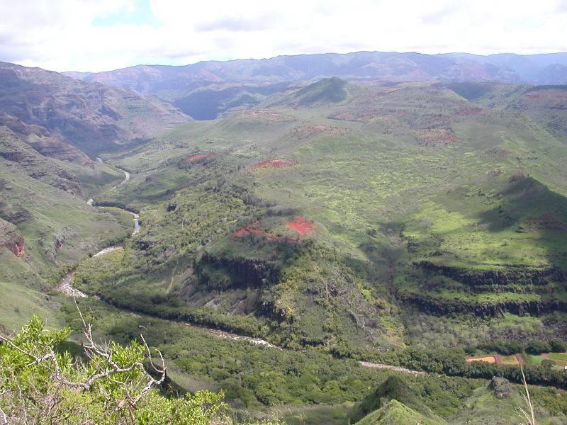 Kauai 05.jpg