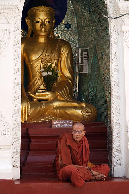 010 - Monk, Swedagon pagoda