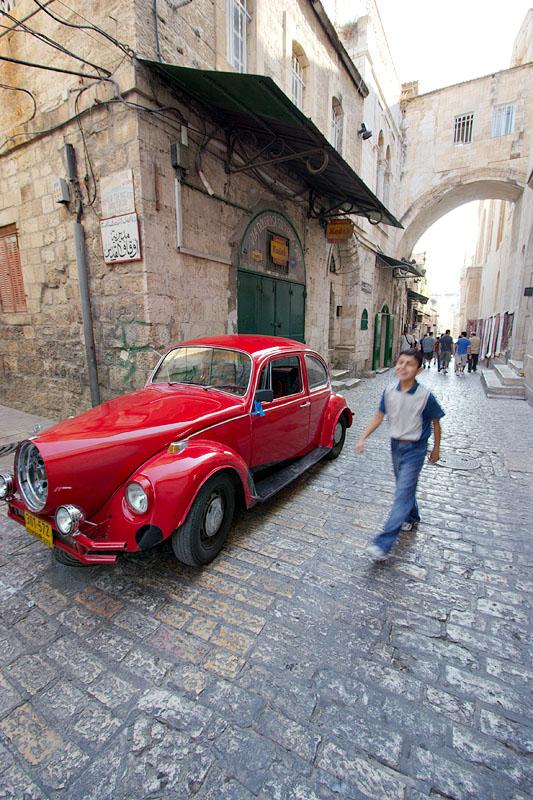 Red beetle - Jerusalem