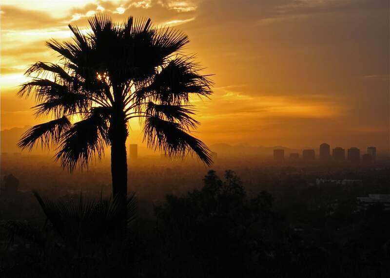 Phoenix overview