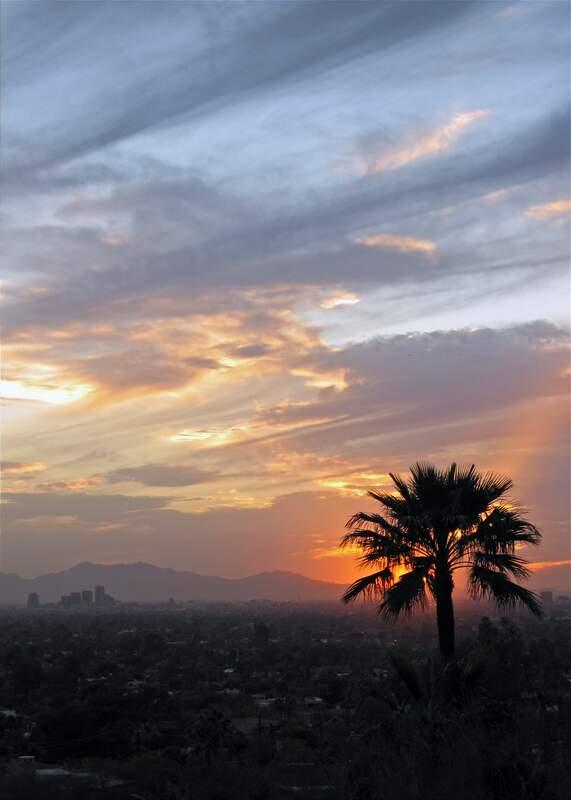 Phoenix Overview #2